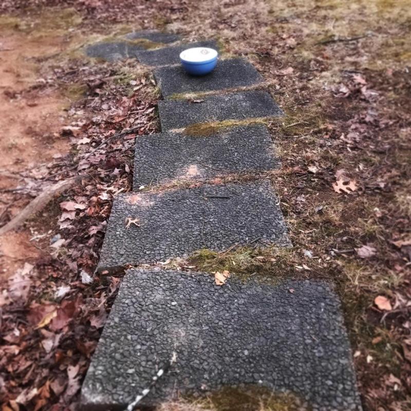 Bowl on path